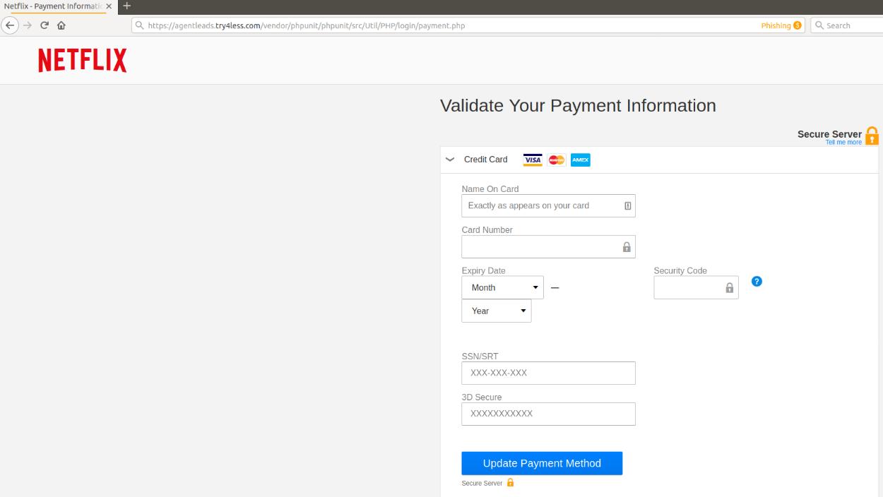 Netflix payment info-1