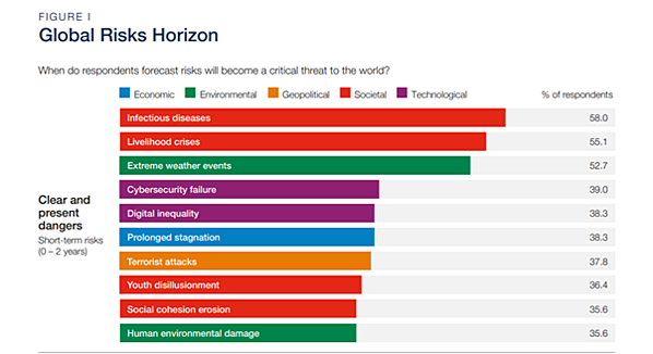 WEF Global Risks Report 2021